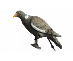 Чучела голубей