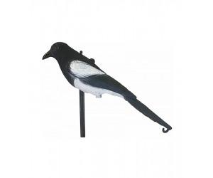 Чучела хищных птиц